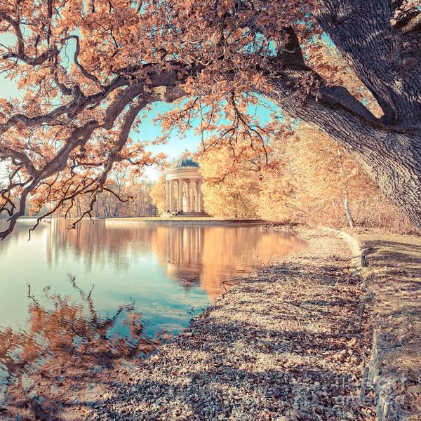 Photograph - Munich At Fall by Hannes Cmarits