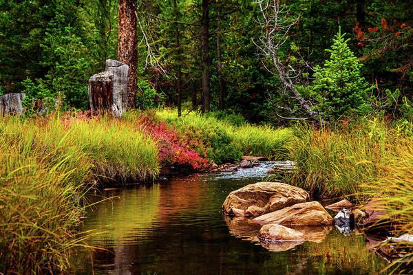 Photograph - Murdock Basin Autumn by TL  Mair