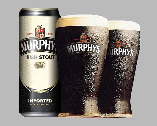 Photograph - Murphys Irish Stout 2 by Ericamaxine Price