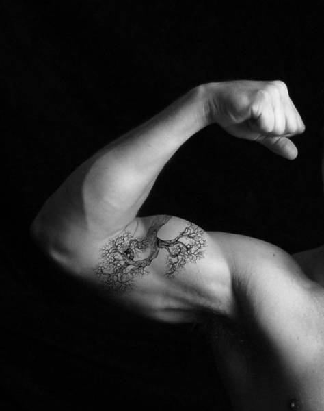 Muscle Growth Art Print