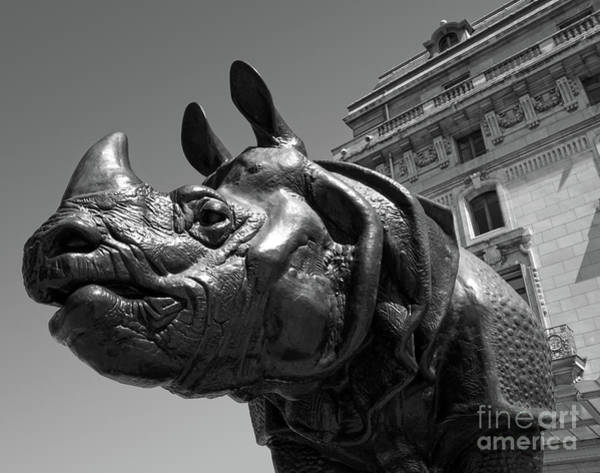 Photograph - Musee D Orsay Rhino Statue by Gregory Dyer