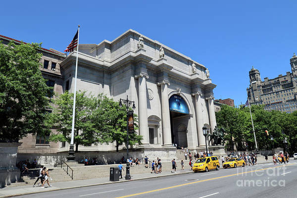 Photograph - Museum Of Natural History by Steven Spak