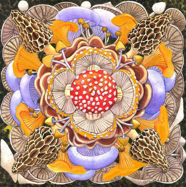 Painting - Mushroom Mandala by Catherine G McElroy