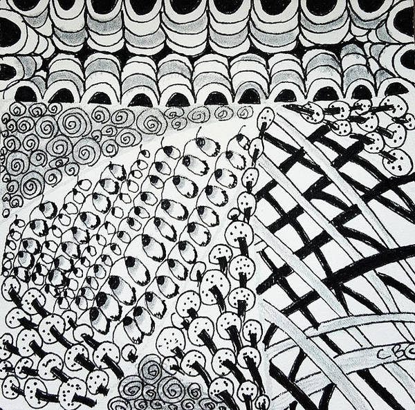 Drawing - Mushrooms by Carole Brecht