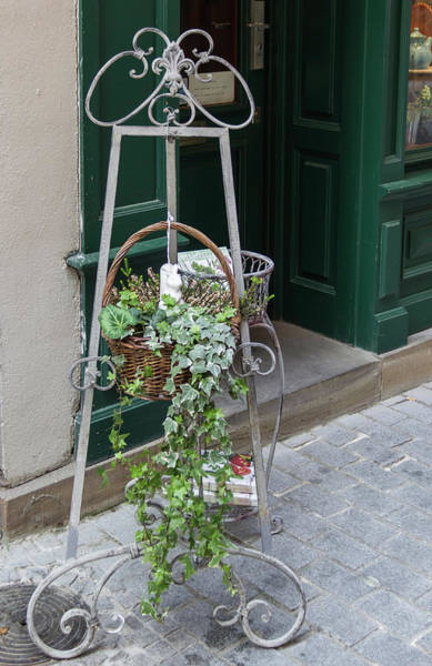Wall Art - Photograph - Music Stand Turned Plant Stand by Teresa Mucha