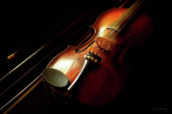Photograph - Music - Violin - The Classics by Mike Savad