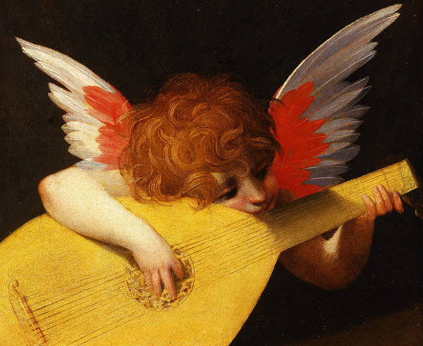 16th Century Wall Art - Painting - Musician Angel by Rosso Fiorentino