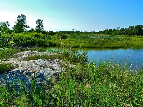 Photograph - Muskoka Ontario 4 by Claire Bull