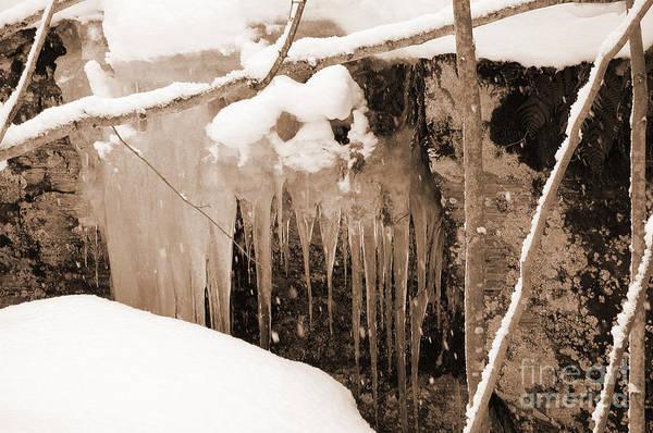 Photograph - Muskoka Winter 5 by Kathi Shotwell
