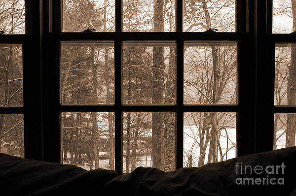 Photograph - Muskoka Winter 7 by Kathi Shotwell