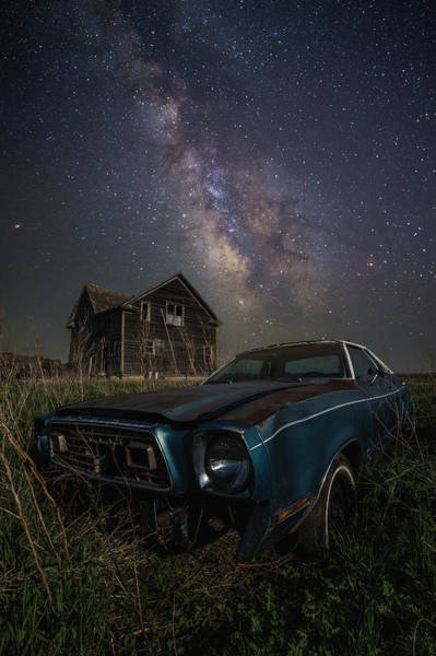 Wall Art - Photograph - Mustang II  by Aaron J Groen