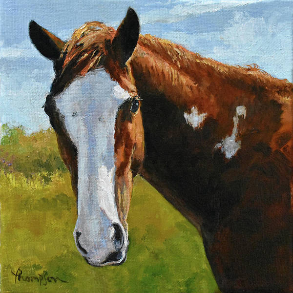 Chestnut Horse Painting - Mustang Mugshot by Tracie Thompson