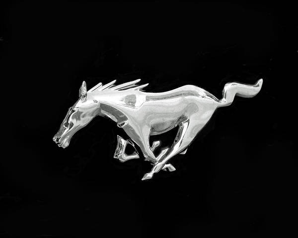 Photograph - Mustang by Rona Black