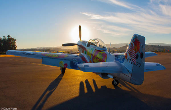 Jelly Belly Photograph - Mustang Sunset by David Horn