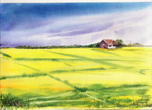 Painting - Mustard Fields In Summer by Asha Sudhaker Shenoy