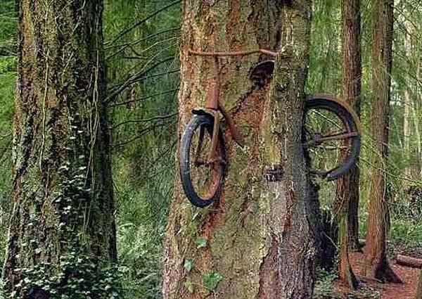 Photograph - Mutilated Bike Series #22 by Kasey Jones