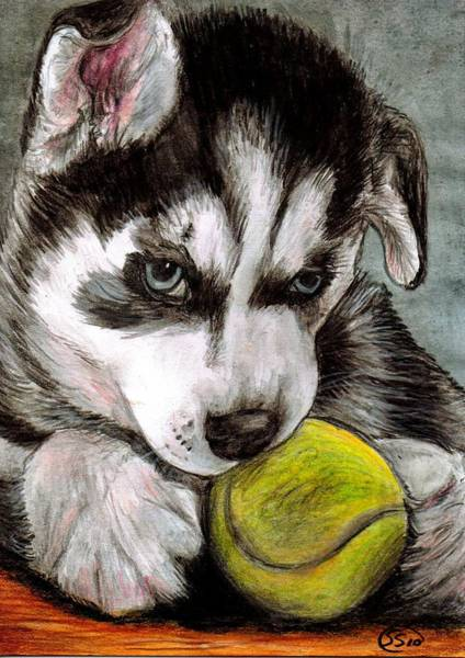 Husky Mixed Media - My Ball by Sarah Stanaland