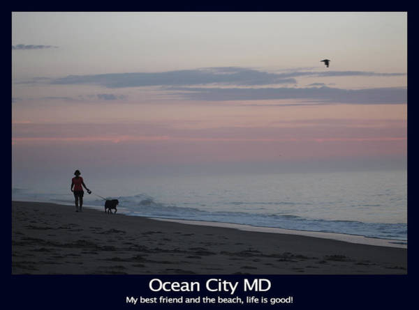 Photograph - My Best Friend And The Beach by Robert Banach