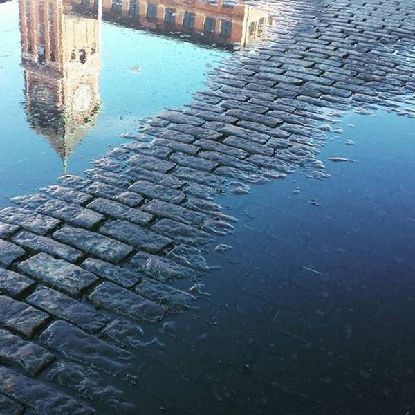 Photograph - My Favorite Place To Find A Puddle by Tricia Elliott