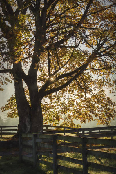 Painting - My Favorite Season - Autumn Art by Jordan Blackstone