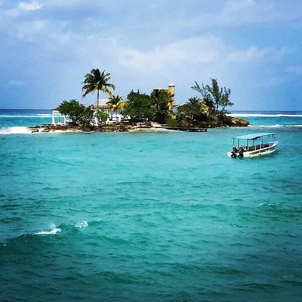 Jamaica Photograph - My New Island. You Like? #jamaica by Tammy Wetzel