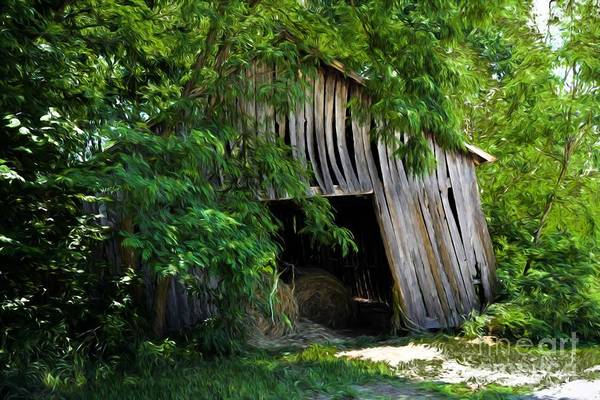 Photograph - My Old Kentucky Barn by Mel Steinhauer