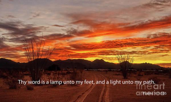 Psalms Photograph - My Path by Robert Bales