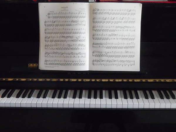 Note Book Painting - My Piano by Esther Newman-Cohen