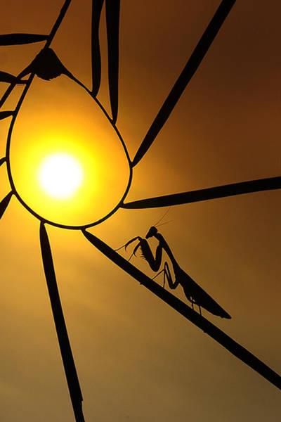 Ferry Photograph - My Sunset by Ferry Irawan
