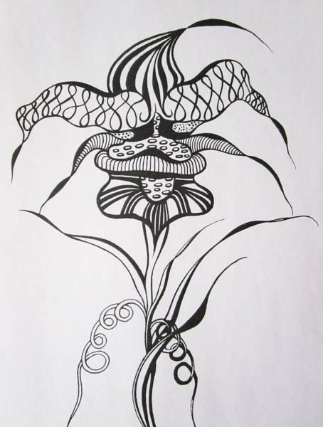 Drawing - Joker by Rosita Larsson