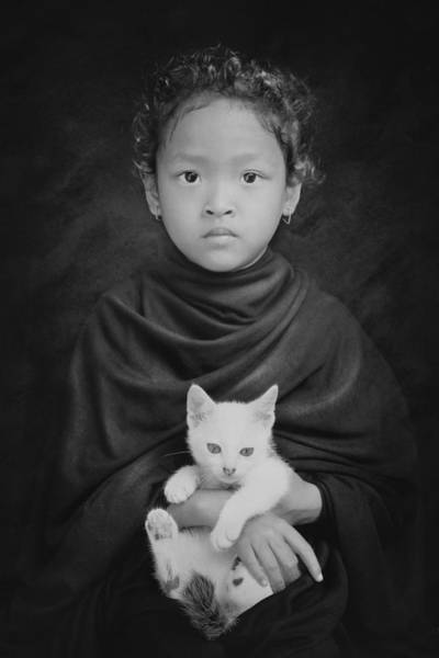Wall Art - Photograph - My White Cat by Jay Satriani
