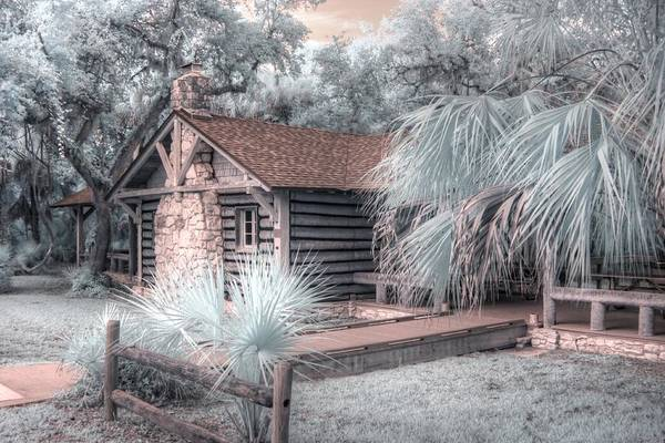 Wall Art - Photograph - Myakka River State Park Cabin  by Jane Linders