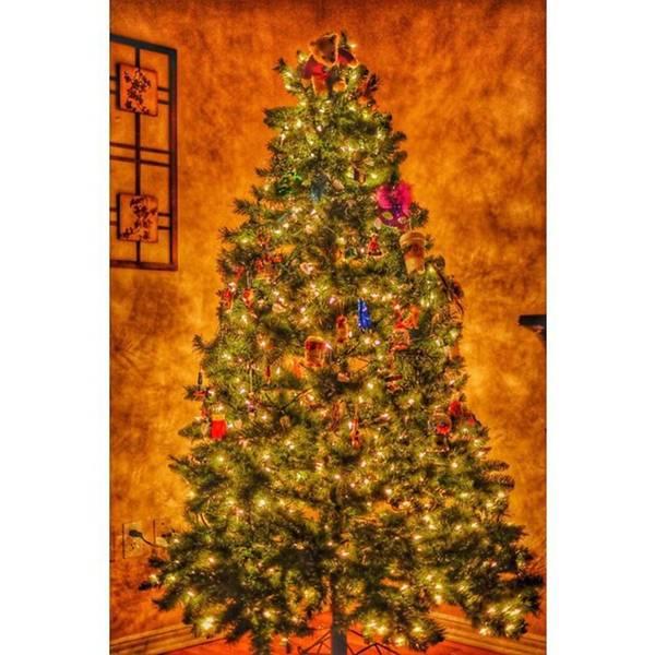 Wall Art - Photograph - #myhouse #myhome #tree #christmas by David Haskett II