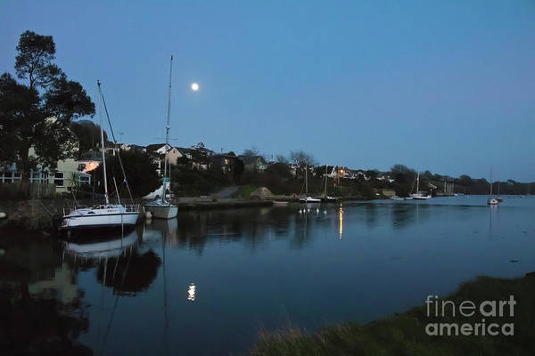 Photograph - Mylor Creek Moonrise With Swans by Terri Waters