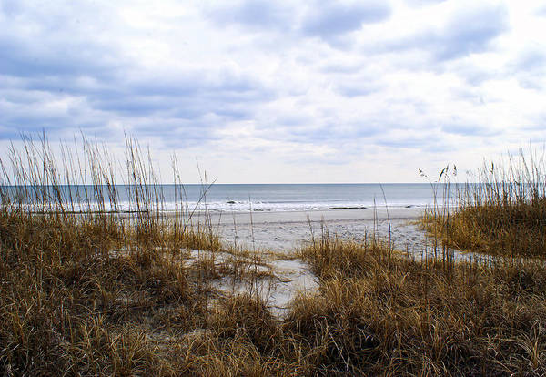 Wall Art - Photograph - Myrtle Beach by Matthew Trudeau