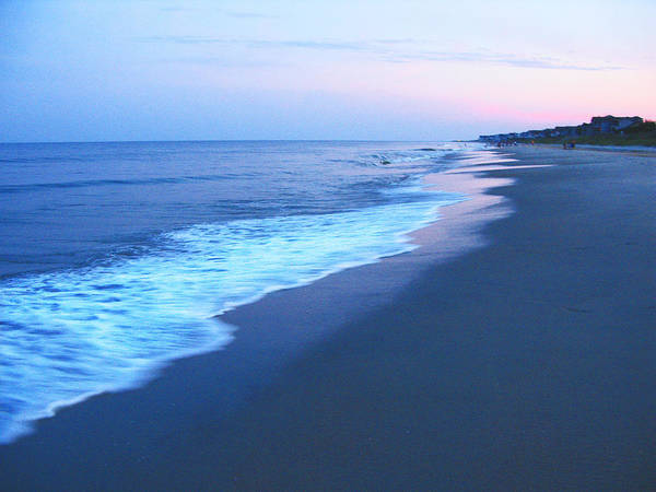 Wall Art - Photograph - Myrtle Beach Sunset by Richard Singleton