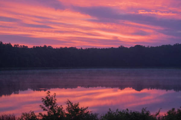 Photograph - Myrtle Grove Lake by Buddy Scott