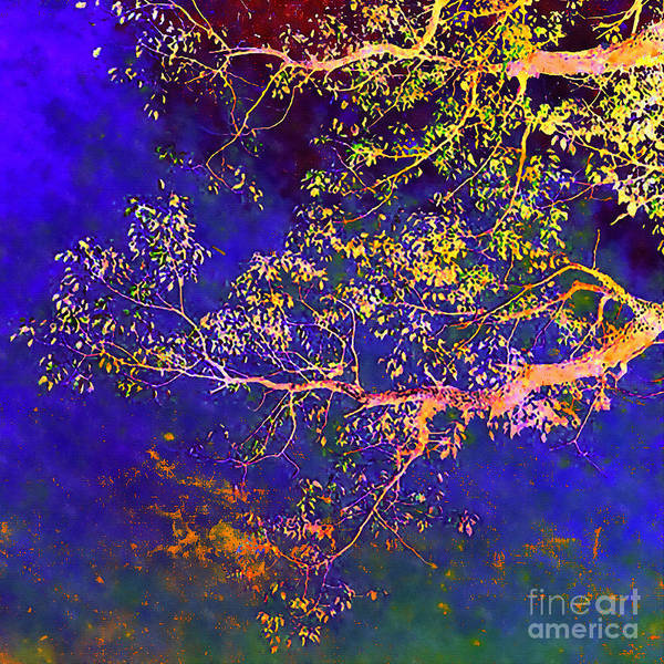 Fall Scenery Mixed Media - Mysteries Of Nature  by Stacey Chiew