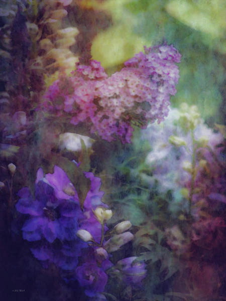 Photograph - Mysterious Garden 2386 Idp_2 by Steven Ward