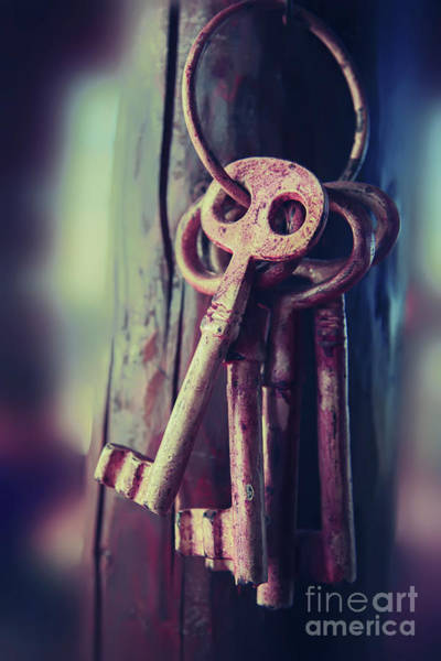Photograph - Mystery Keys by Ariadna De Raadt