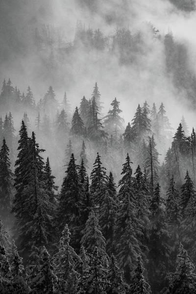 Photograph - Mystic  by Dustin LeFevre