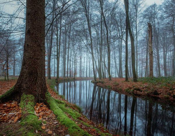 Photograph - Mystic Voorstonden by Mario Visser