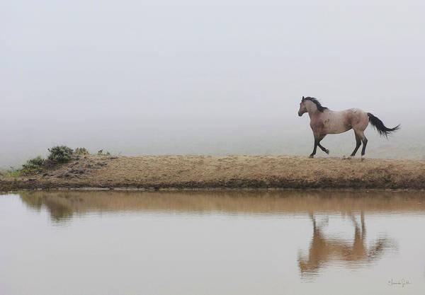 Photograph - Mystical Beauty  by Amanda Smith