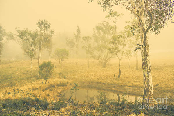 Photograph - Mystical Lake by Jorgo Photography - Wall Art Gallery