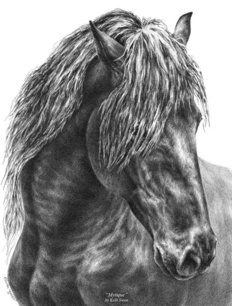 Equine Drawing - Mystique - Friesian Horse Portrait Print by Kelli Swan