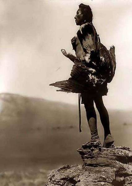 Native American Culture Painting - n Indian Eagle Catcher.  1908 by Edward S. Curtis by Edward S Curtis