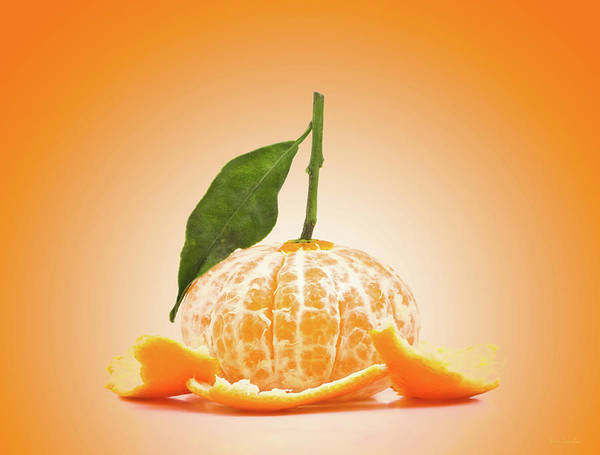 Peel Photograph - Naked Orange by Wim Lanclus