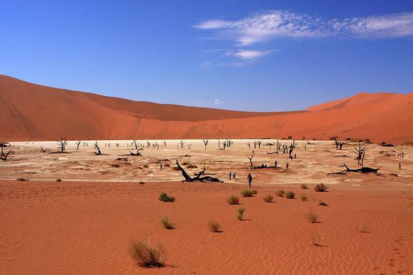 Photograph - Dead Vlei, Sossusvlei, Namibia, Southern Africa by Aidan Moran