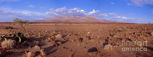 Photograph - Namibia Brandberg Panoramic View by Warren Photographic
