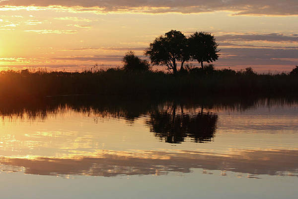 Photograph - Namibia Nightfall by Karen Zuk Rosenblatt